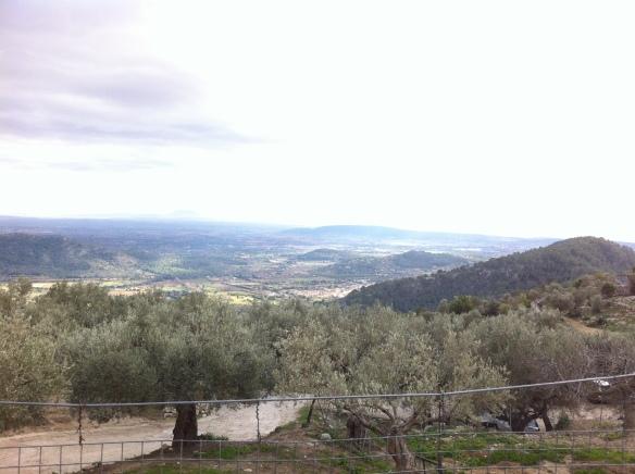 View from Es Verger rest